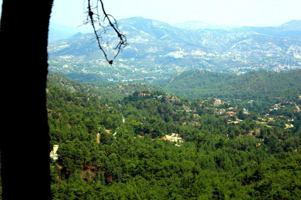 Кипр, горы Троодос