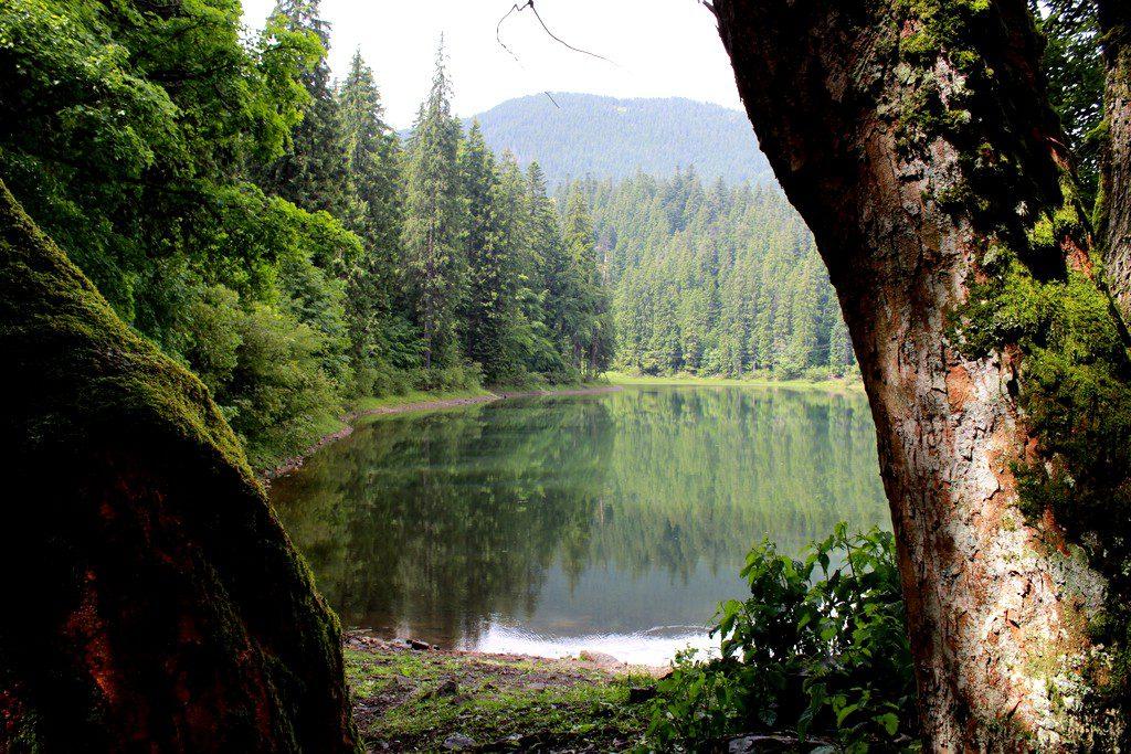 Synevyr lake, Ukraine