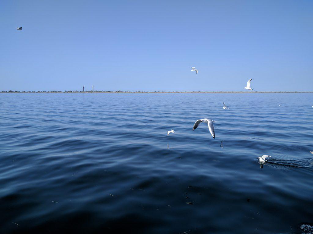 Dzharylhach island, Ukraine