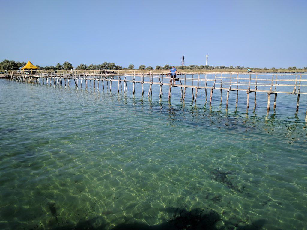 l'ile de Dzharylgac, Kherson region, Ukraine