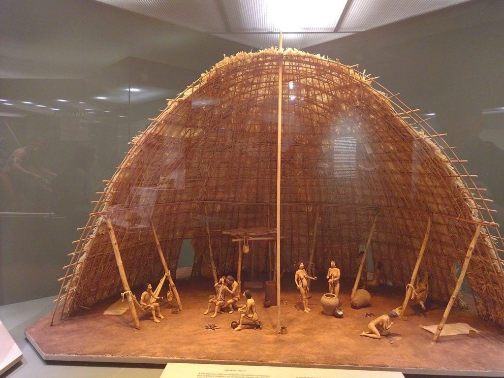 США, Нью-Йорк, Американский музей естественной истории